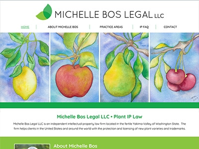 Website Design for Michelle Bos Legal LLC