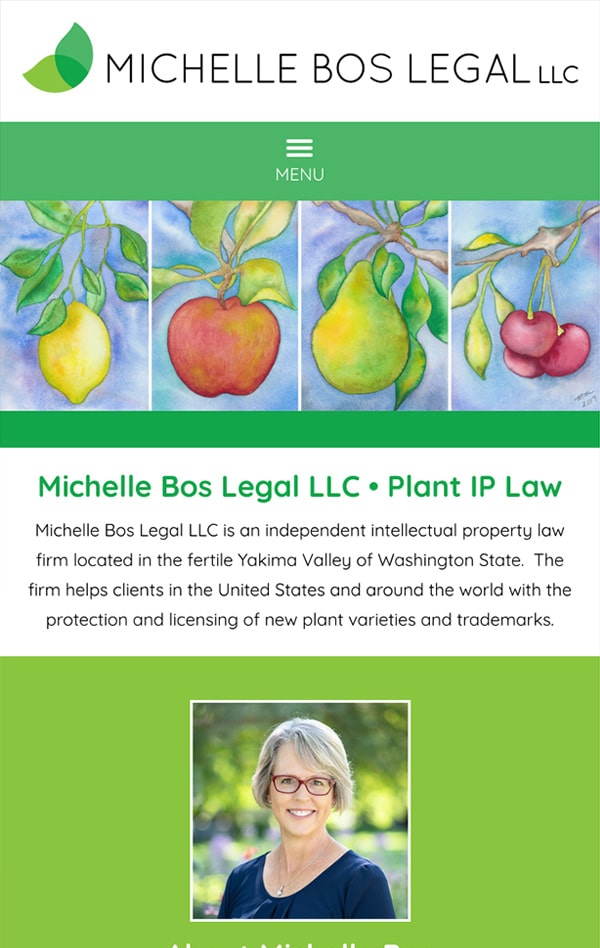 Mobile Friendly Law Firm Webiste for Michelle Bos Legal LLC